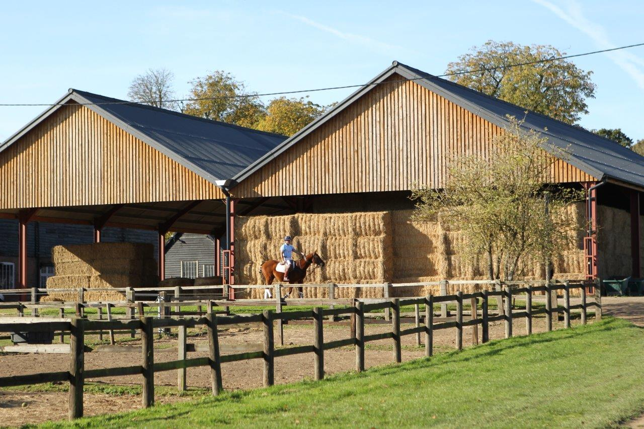 Experienced Groom (with the opportunity for some riding) - Private Yard - Berk (741)