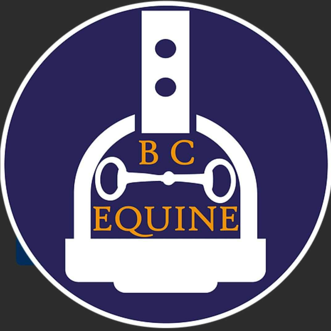 Full Time and Part Time roles - BC Equine - Leatherhead (575)