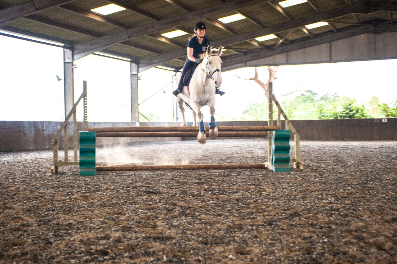 Yard Manager and Instructor - London Equestrian Centre (585)