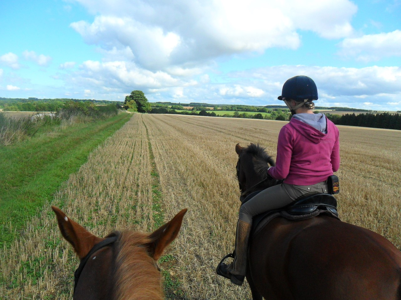 Sole Charge Groom - Private Yard - Cirencester (609)