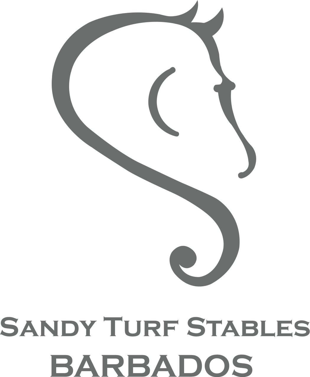 Instructor / Manager - Riding School - Barbados (677)